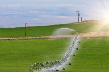 irrigation, crop circle, farm broker, walla walla, real estate, agribusiness dry land wheat farm for sale washington CRP ground for sale winery and vineyard for sale walla walla real estate farm broker agriculture blue mountains real estate agent farms for sale land for sale farm ground CRP recreational property dry land  WA OR ID Washington Idaho Oregon Pacific Northwest