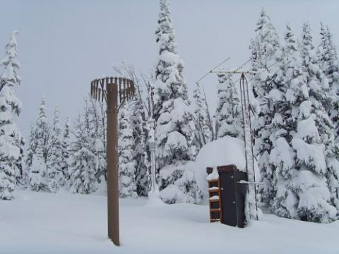 "<img src=""NRCS-2019-Washington-State-Snowpack-Report.jpg""title=""NRCS 2019 Washington State Snowpack Report""alt=""2019 Snowpacks"">"