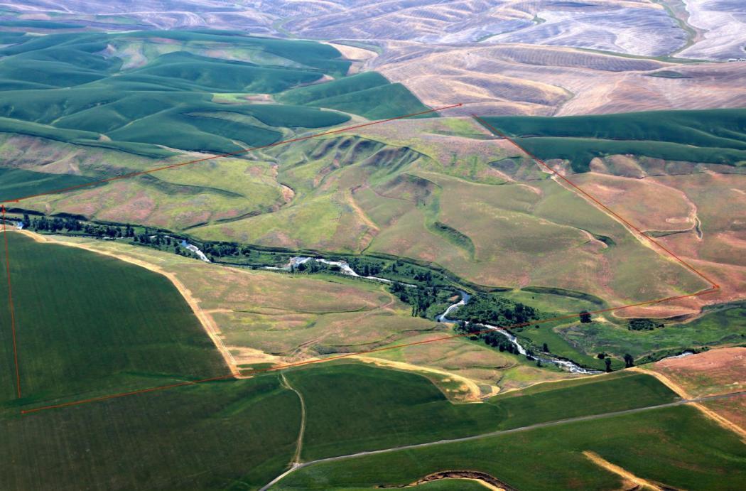 "<img src=""farm-and-recreation-ranch-for-sale-in-walla-walla-county-washington-state-wheat-farm.jpg""title=""Struthers Road Farm and Recreation Ranch for sale Walla Walla County Washington State""alt=""farm and recreation ranch for sale in walla walla washington state farmland farm for sale walla walla farm ground property for sale wheat farm development"">"