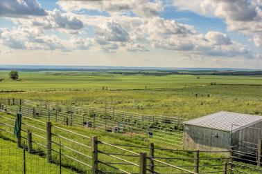 "<img src=""irrigated-vineyard-development-for-sale-walla-walla-Washington-estate-home-horse-set-up-foothills-blue-mountains-farm-ranch-property.jpg""title=""irrigated vineyard development for sale walla walla washington estate house horse set-up in the foothills of the blue mountains""alt=""irrigated vineyard development for sale with estate house shop foothills blue mountains"">"