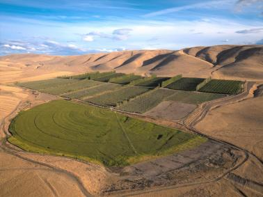 "<img src=""Blackrock-Ranch-for-sale-sealed-bid-process-Moxee-Yakima-Washington-state-WA-irrigated-property-land-agriculture-farm-organic-orchard-cherries-apples-wind-machines-windmill-water-rights.jpg""title=""Blackrock Ranch for sale Moxee Yakima County Washington State WA Irrigated property land agriculture farm organic orchard cherries apples wind machines windmill water rights""alt=""Blackrock Ranch for sale Moxee Yakima County Washington State WA Irrigated property land agriculture farm organic orchard"">"
