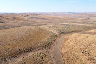 Wallla Walla County Dryland CRP Farm for sale, AgTradeGroup, Farm Brokers