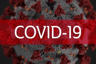 "<img src=""covid19-coronavirus-2020-vineyard-owners-pacific-northwest-2018-walla-walla-washington-state.jpg""title=""walla walla washington vineyard owners harvest 2018 prediction""alt=""great news for walla walla washington vineyard owners harvest 2018 prediction"">"