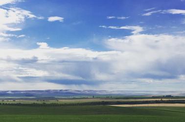 pacific northwest,Idaho, farm,value,farming in Idaho,Idaho farms,farms for sale,land value,Idaho land value,irrigated land value,dry land value