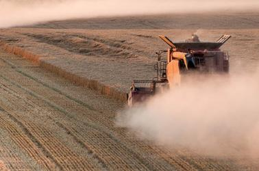 wheat harvest with combine, walla walla, wa, farms for sale, real estate farm brokers, farming, ranch dry land wheat farm for sale washington CRP ground for sale winery and vineyard for sale walla walla real estate farm broker agriculture blue mountains real estate agent farms for sale land for sale farm ground CRP recreational property dry land  WA OR ID Washington Idaho Oregon Pacific Northwest