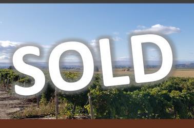 "<img src=""irrigated-farm-vineyard-home-for-sale-sunnyside-washington-yakima-valley-ava-roza-irrigation-water-rights.jpg""title=""irrigated farm and vineyard for sale sunnyside washington yakima valley ava with water rights from Roza Irrigation District""alt=""irrigated farm and vineyard for sale sunnyside washington yakima valley ava with water rights from Roza Irrigation District"">"