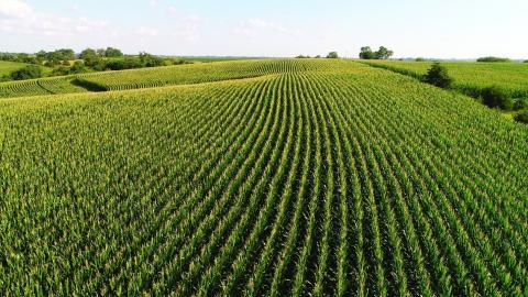 Farmland Sellers and Capital Gains Taxes on Sale, what to do about capital gains taxes on farmland