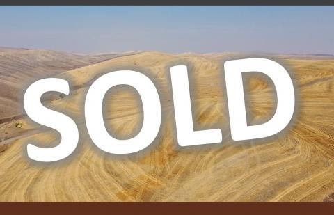 sold,washington farm,walla walla,wheat farm