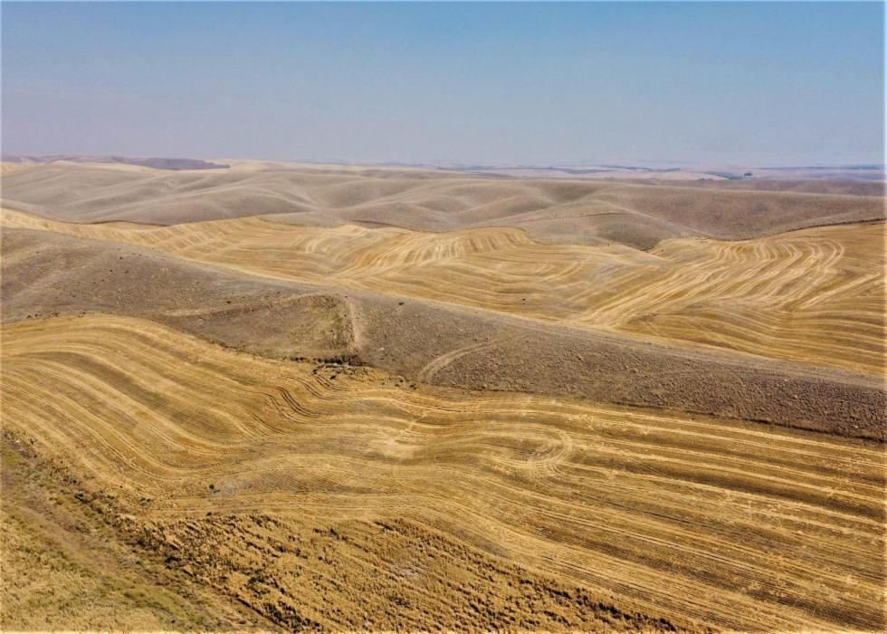 dryland wheat farm for sale pacific northwest
