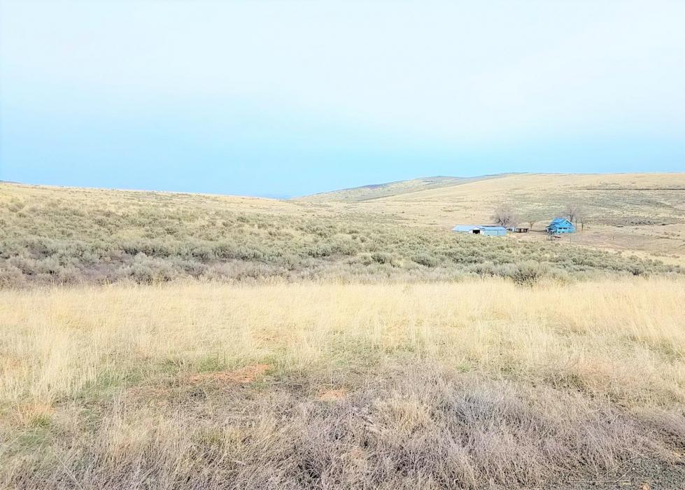 "<img src=""CRP-Farm-Recreation-Ranch-For-Sale-Quincy-Washington-Douglas-County-Rimrock-Meadows-Recreation-Community-hunting-income-farmground-farmland-property-available-tillable-acres.jpg""title=""CRP farm and ranch for sale located near Quincy Washington in Douglas County"">"