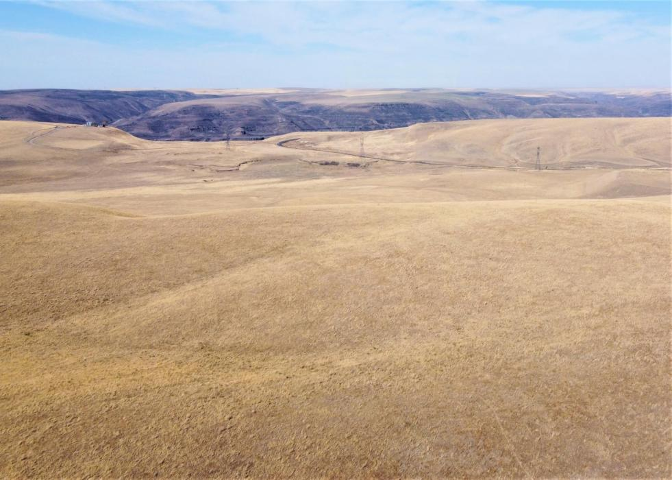 WALLA WALLA COUNTY DRYLAND CRP FARM FOR SALE - $2,300,000