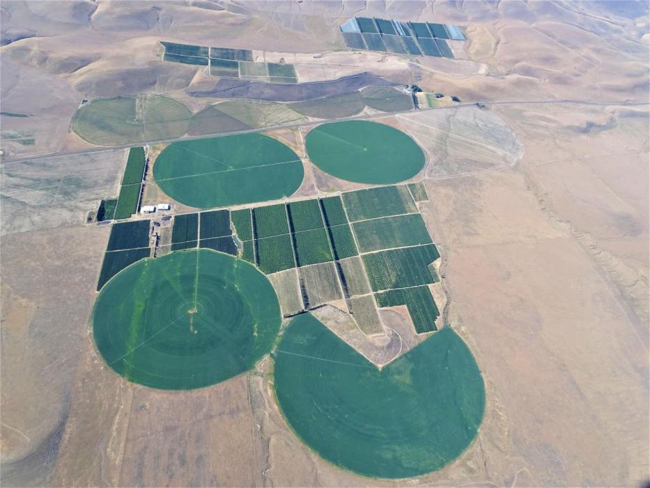 "<img src=""Blackrock-Ranch-for-sale-sealed-bid-process-Moxee-Yakima-Washington-state-WA-irrigated-property-land-agriculture-farm-organic-orchard-cherries-apples-wind-machines-windmill-water-rights.jpg""title=""Blackrock Ranch for sale Moxee Yakima County Washington State WA Irrigated property land agriculture farm organic orchard cherries apples wind machines windmill water rights""alt=""Blackrock Ranch for sale Moxee Yakima County Washington State WA Irrigated property land agriculture farm organic orchard"">"