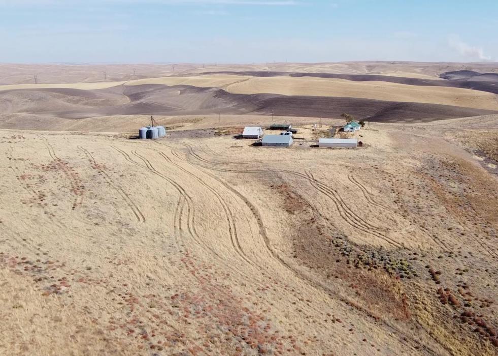 CRP Farm for sale