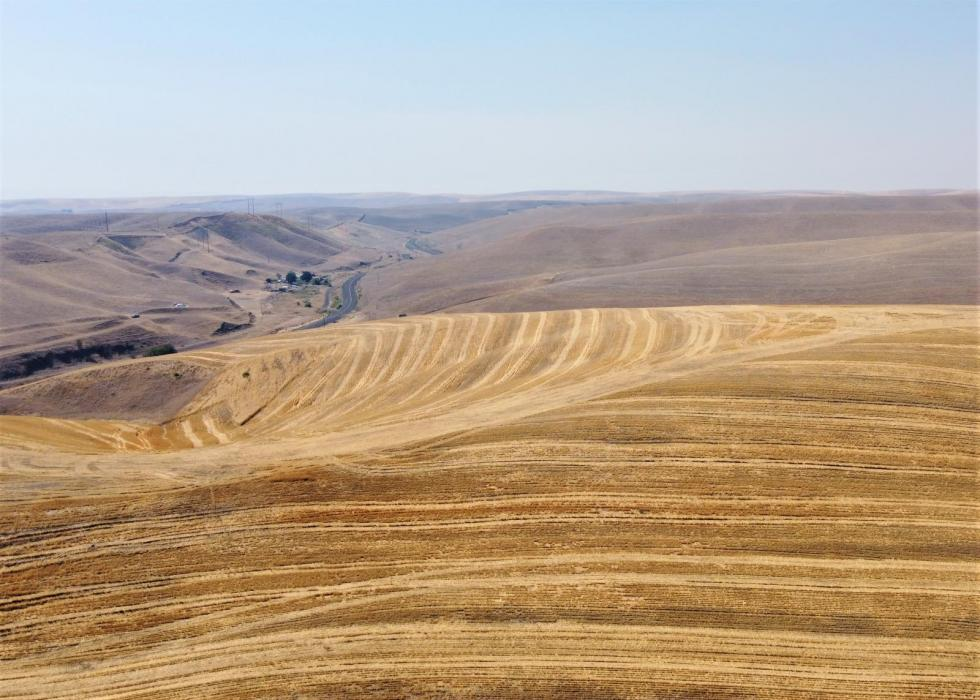 Dryland wheat farm and crp group for sale in walla walla county, WA