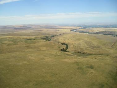 "<img src=""farms-for-sale-oregon-farmland-eastern-oregon-ranches-for-sale-washington-blue-mountains-walla-walla-area-farmground-conservation-reserve-program-crp-farm.jpg""title=""Lincton Mountain CRP farm for sale""alt=""CRP ground for sale farm ground for lease farmground land for sale recently sold crp conservation reserve program land wheat farms for sale washington walla walla real estate farm broker agriculture blue mountains agent Oregon land for sale Idaho Montana Pacific Northwest"">"